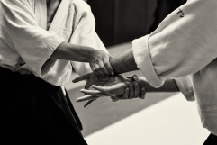 Stage Micheline Shihan